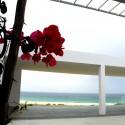 Centro de Visitantes con vistas a la playa de Bolonia